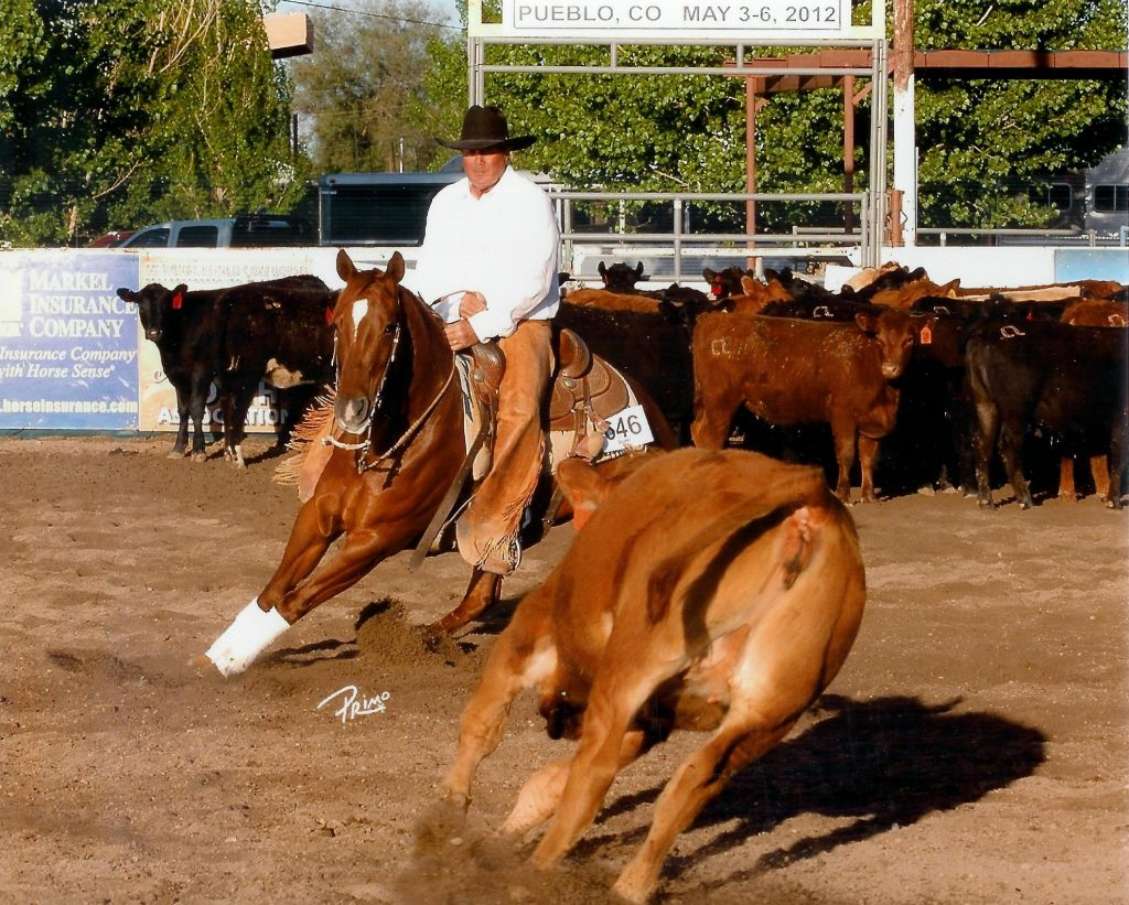 Jim Cook cutting and Colorado cowhorse training