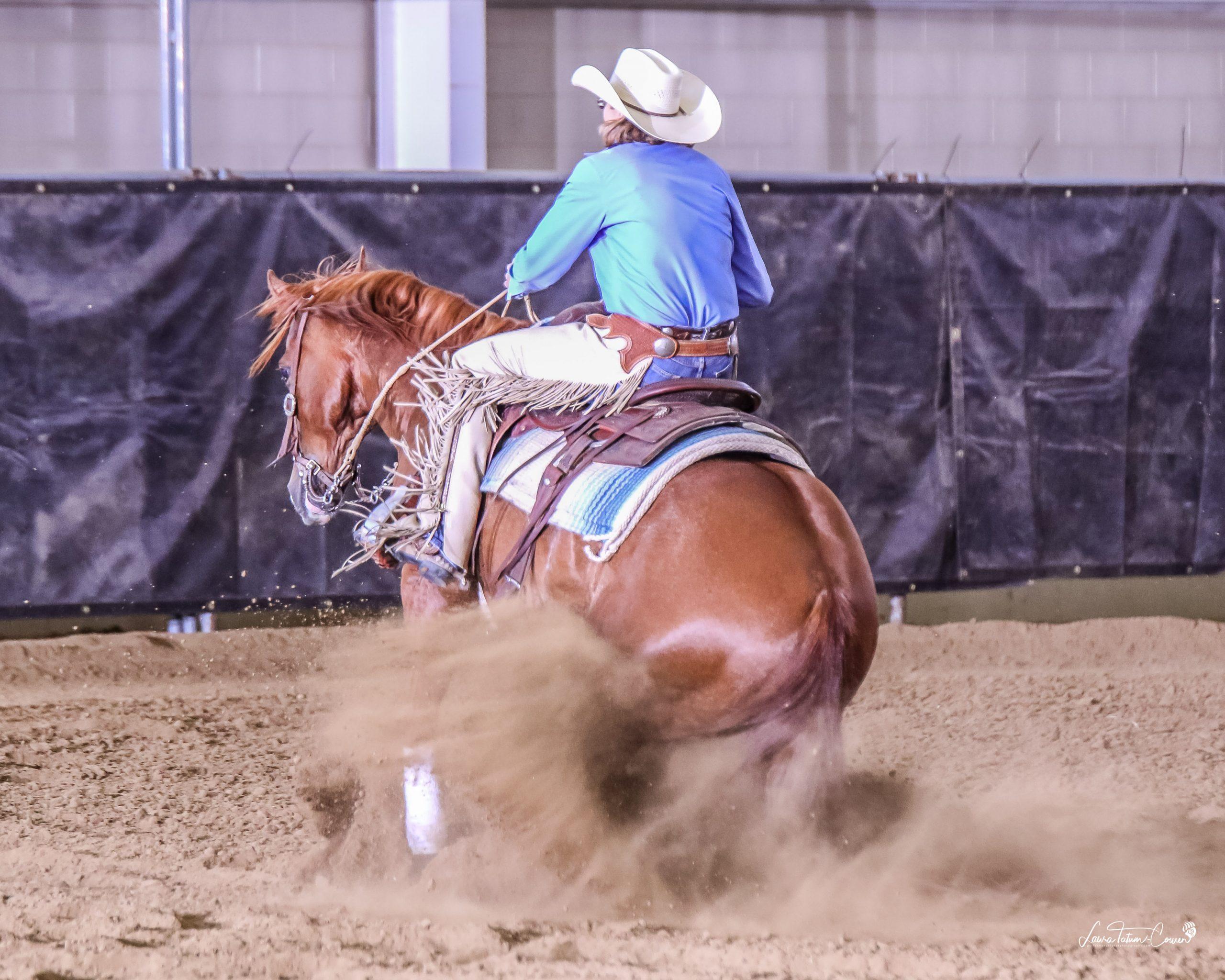 Jill Cook cow horse training in Colorado mario stopping