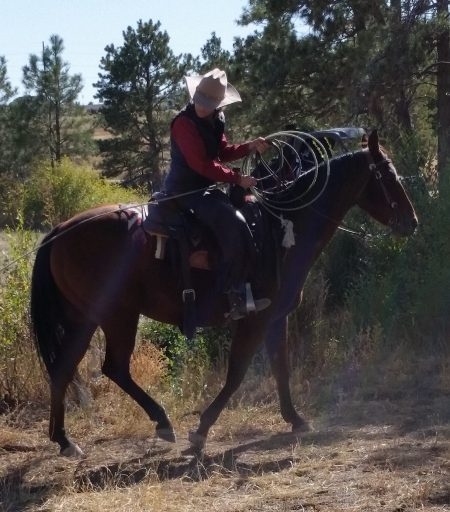 non pro working on trail with cow horse