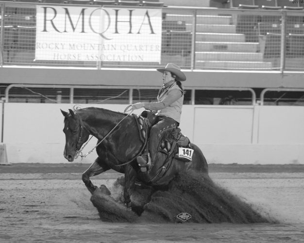 non pro client cow horse trianing