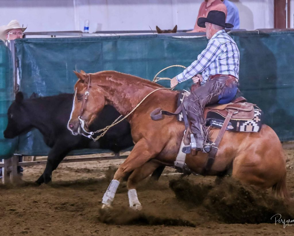 Mike non pro working cow with Colorado cowhorse trainers