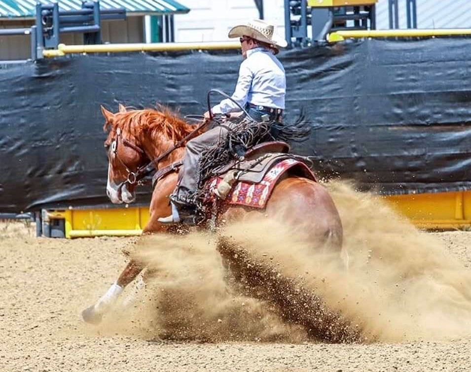 """Alison Brantley and Wired On Pepto """"Lester""""         Photo Credit: Performance Horse Photography"""