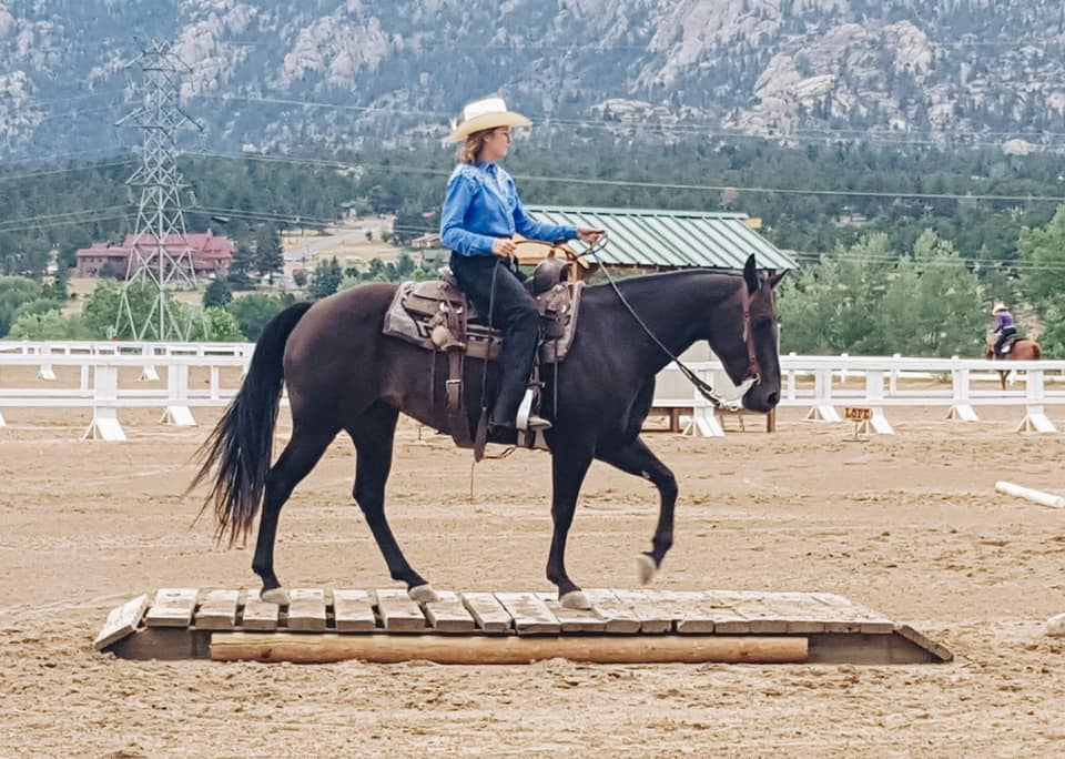 """Delaney and SSR Poco Rey """"Sis"""" - Novice Youth Stock Horse Trail"""