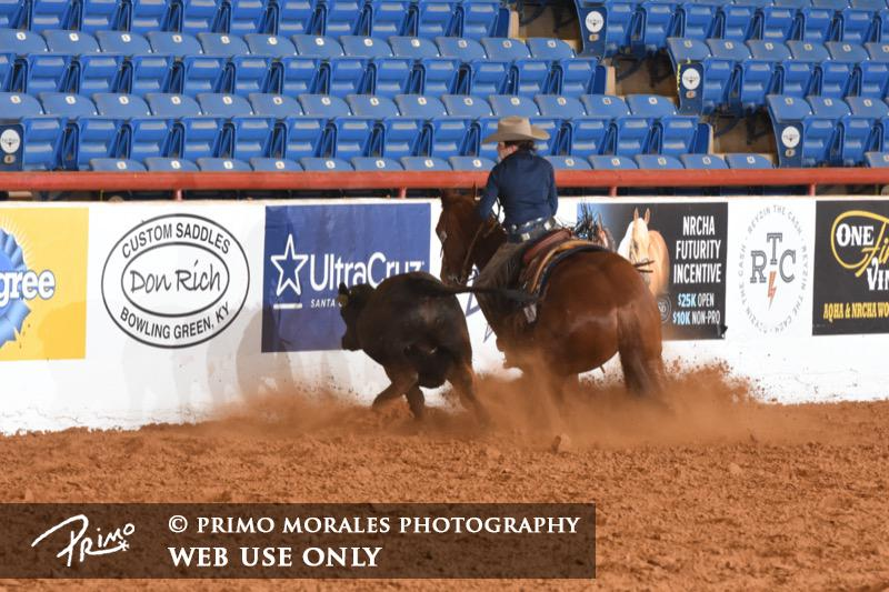 Alison Brantley & Metallic Dual - Marked a 142.5 Cow, Novice Non Pro Bridle Prelims